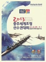 Illustrated card KOR 2013 WRC Chungju detail