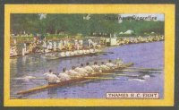 cc gbr 1924 gallaher s cigarettes british champions of 1923 no. 29   the thames rowing club  winner of the grand challenge cup 1923 at henley royal regatta